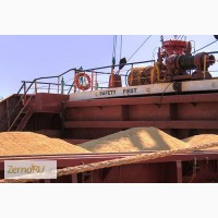 Пшеница мягкая в порту Александрия, Египет