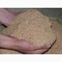Пшеничные отруби, продажа оптом
