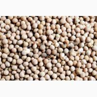 ООО НПП «Зарайские семена» закупает фуражное зерно:люпин от 40 тонн