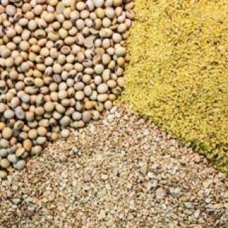 Шрот соевый протеин 49-51% ДЕШЕВО