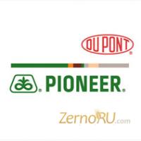 Семена гибридов подсолнечника ПР64Ф66, ПР62А91, ПР63А90, ПР64Ф50 от компании Pioneer