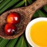 Пальмовый олеин