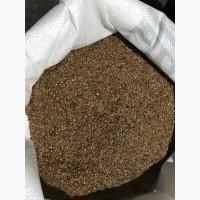 Семена Льна РС2