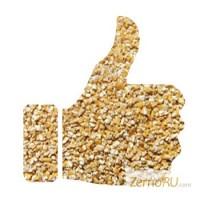Крупа пшеничная оптом ТУ