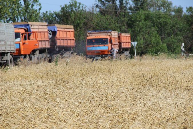 Фото 8. Услуги зерновозов