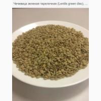 Продаю Чечевица зеленая тарелочная (Lentils green disc), ГОСТ 7066077