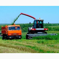 Услуги уборки урожая комбайнами