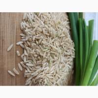 Рис Здоровье рис бурый