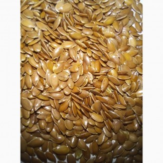 Продаем семена льна золотистого