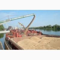 Экспорт пшеницы 4 кл в Турцию