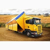 Оказываем услуги по перевозке сельхозпродукции
