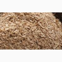 Закупаем отруби пшеничные от 20 тонн в мешки или Биг-Бэги