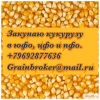 Закупаю кукурузу