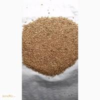 Продаю Пшеницу 3 класс
