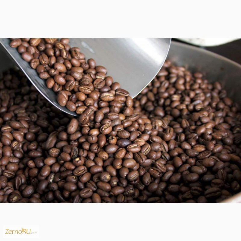 Coffee beans arabica or robusta